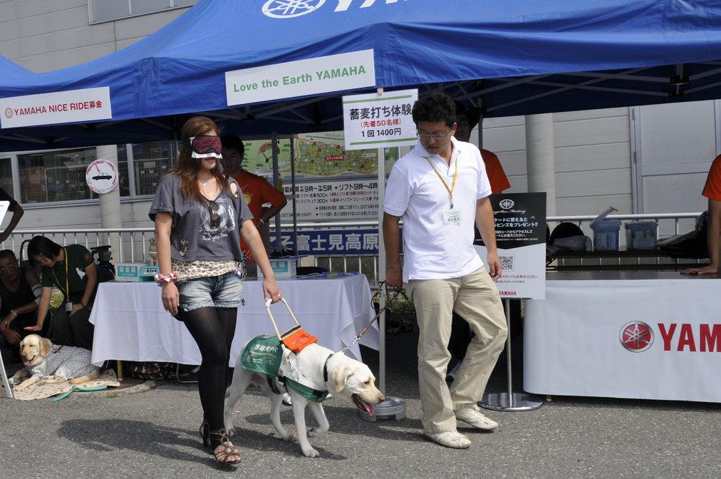アイマスクをして盲導犬との歩行体験を行うドラッグスターミーティングの来場者