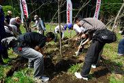 植樹活動の様子