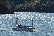 自動航行するBREEZE10